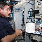 Astronaut Mike Hopkins With Capillary Flow Experiment